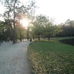 October 11, 2012 – Vondelpark