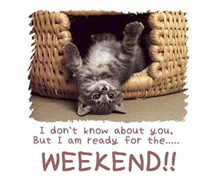 weekend-kitty