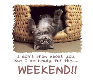 weekend-kitty